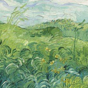 Wheat_Fields-560