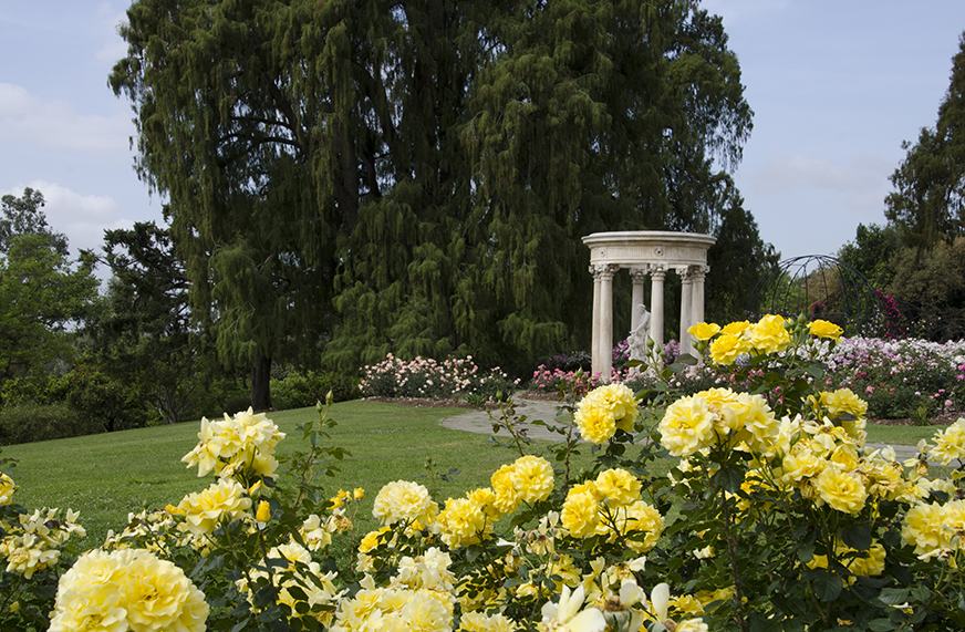 11 Reasons To Visit The Huntington Oil And Marble