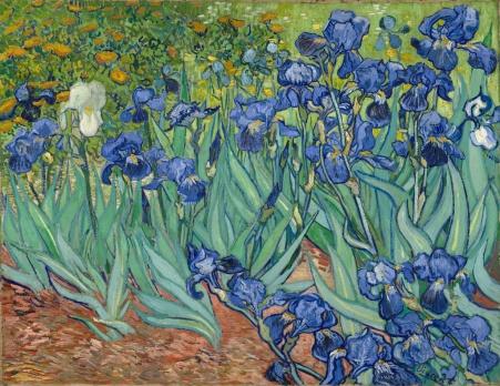 Van Gogh Irises